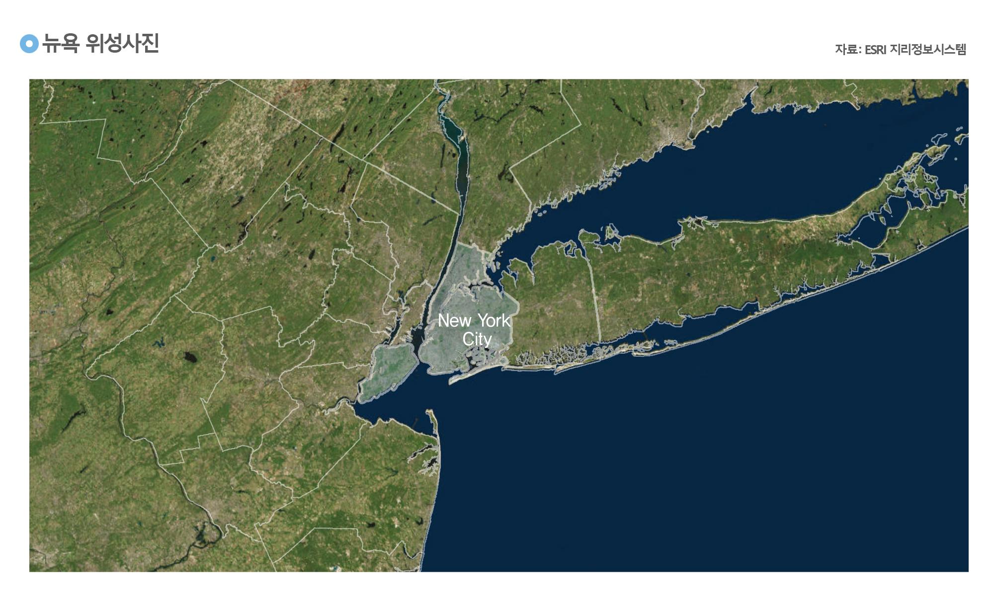 뉴욕 위성사진